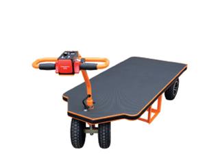 Motorized platform trolley